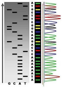 Genetic Testing Blog Picture