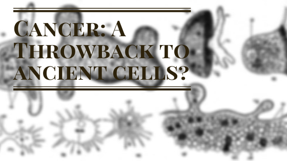 Cancer: A Throwback to Ancient Cells